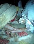 (19.03.2012 zveri) Рэкс - Пробуждение Зла 2