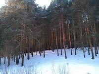(27.01.2013 doroga) Гуляли с Аленой - А на этом берегу мы когда-то ночевали с братом