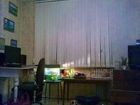 (09.02.2013 blogger) Переезд Алены - А это уже столы, аквариумы и кот сегодня