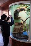 (16.02.2013 zveri) Екатеринбуржский зоопарк - Фотографирую змей