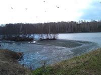 (29.04.2013 doroga) Поездка на Хасан - Птицы и лед