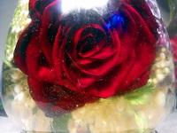 (02.06.2013 blogger) Цветы в глицерине - Роза