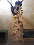 (25.06.2013 blogger) Подарки с Крита от родителей - Музыка ветра из ракушек