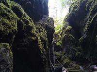 (06.07.2013 doroga) Природный парк Оленьи ручьи - Большой провал. Лестница вверх