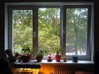 (22.07.2013 blogger) Пластиковые окна - В комнате