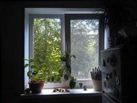 (22.07.2013 blogger) Пластиковые окна - На кухне