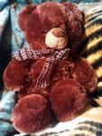 (16.12.2013 blogger) Новогодний подарок - Медведь