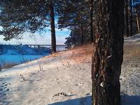 (27.12.2013 gorod) Зимний лес - Берег Исети