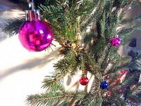 (27.12.2013 blogger) Наша ель - На столе