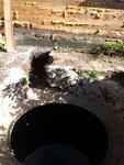(05.09.2014 gorod) Бак для туалета - Уже поместили в яму и засыпали песком. Ну и подвод для трубы