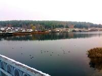 (16.10.2014 gorod, doroga) Первый снег - И утки под мостом