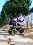 (07.04.2015 gorod) Гуляем с ребенком - Коляска Aviator на фоне елей