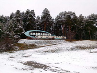 (27.10.2015 gorod) У нас в Каменске выпал снег - Лес в снегу за мостом
